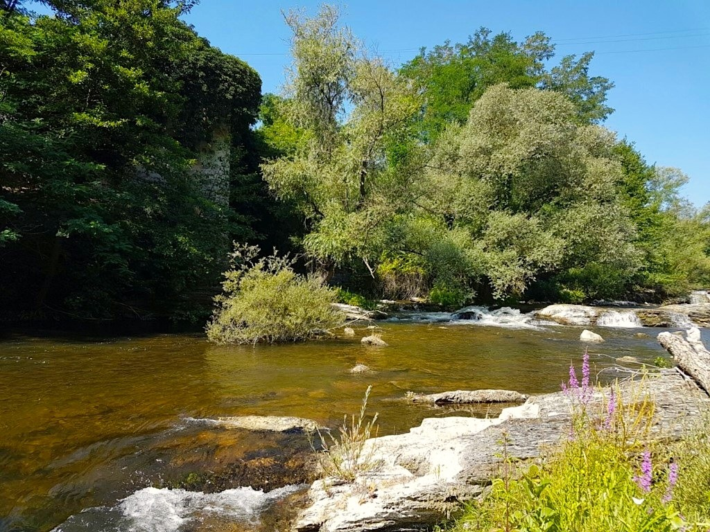 Fly Fishing Guide Italy: your best fly fishing guide in ...